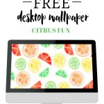 Free Desktop Wallpaper- Citrus Fun