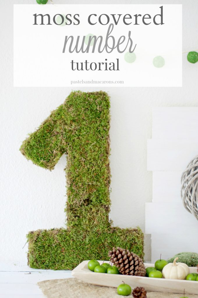 Moss Covered Number Tutorial By Pastels & Macarons #mosscoverednumbertutorial #diy #diymossmonogram #mosscrafts #mosscraft