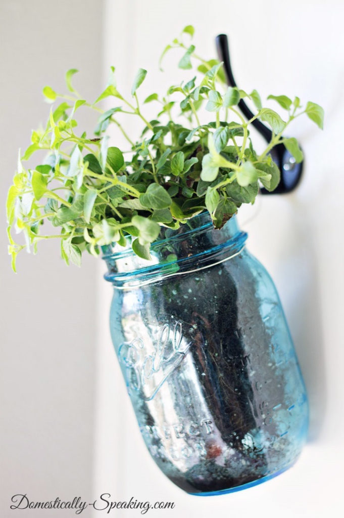 Indoor Herb Garden Ideas I Absolutely Love