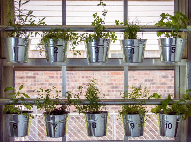 A collection of indoor herb garden ideas for your home. So much inspiration!