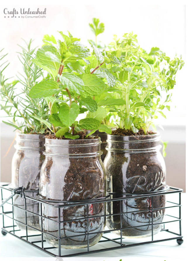 I absolutely love all of these indoor herb garden ideas. If you don't have an indoor herb garden, you need to get on to it!