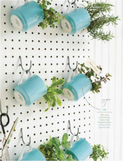 Herb Garden Ideas I Love For Indoor Spaces