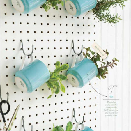 A roundup of my absolute most favorite indoor herb garden ideas from Pinterest!