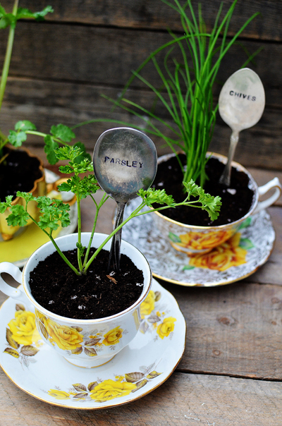 These indoor herb garden ideas are just too cute! I especially love this teacup herb garden!