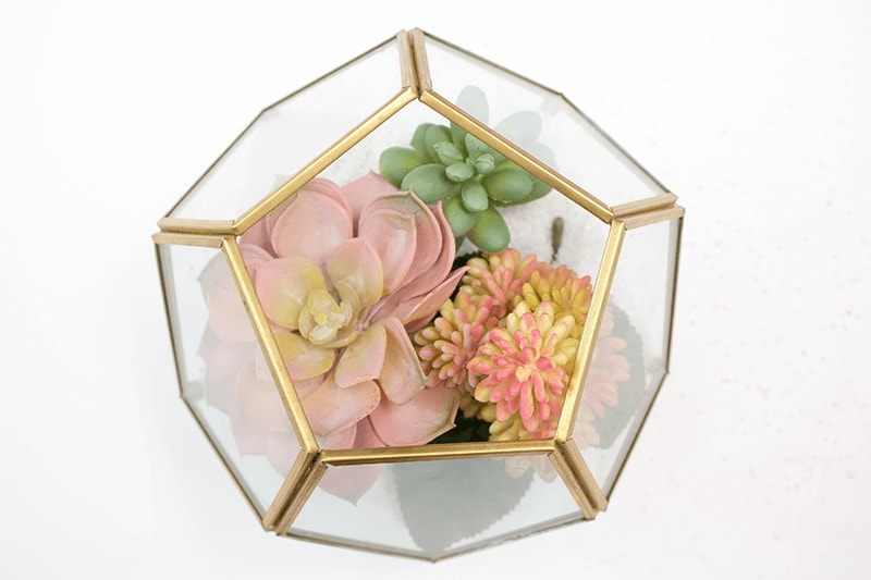 This DIY succulent terrarium makes the perfect centerpiece.