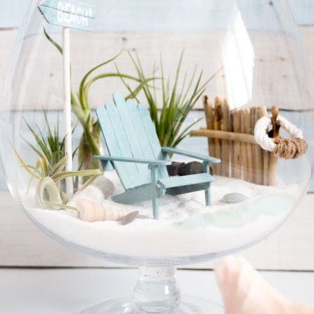 Looking for diy fairy garden ideas? Look no further. This is a fabulous tutorial to help you make a homemade fairy garden using air plants for a beach fairy garden finish!